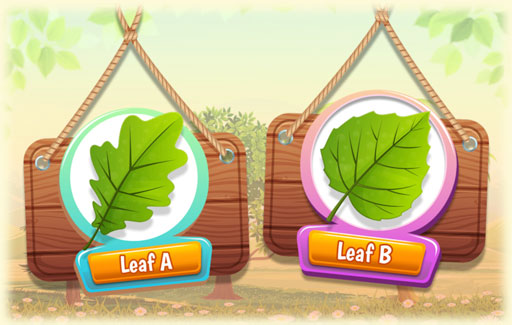 Identify on a diagram three or more parts of a leaf.