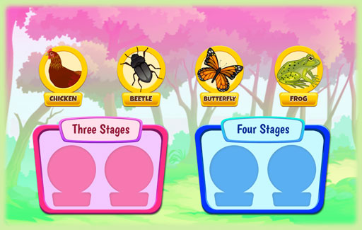 Identify organisms that have 3-stage or 4-stage life cycles