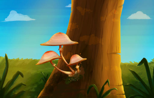 State the characteristics that differentiate fungi from other living things such as bacteria, animals and plants